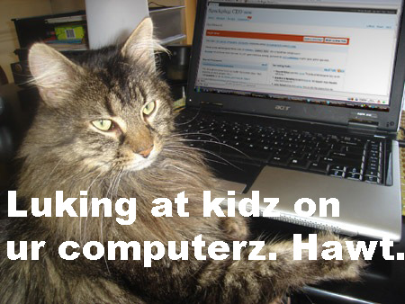 cat-at-keyboard copy.jpg